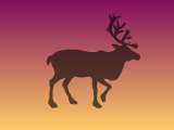 Северен елен